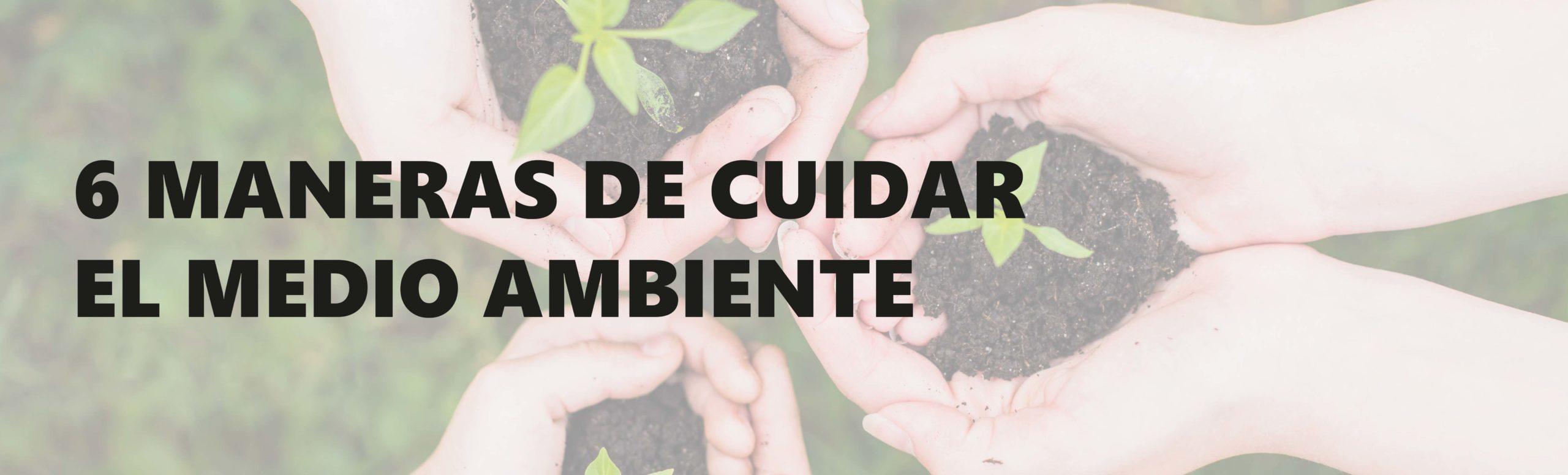 Dia Medio Ambiente